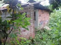 Casa Vieja Detras